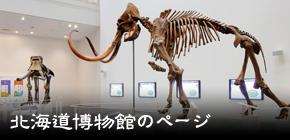 北海道博物館のページ
