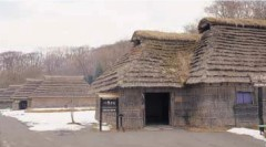 Restored houses thatched with saw grass (The Ainu Museun)