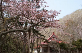 Kokutaiji Temple designated a historic site by the national government