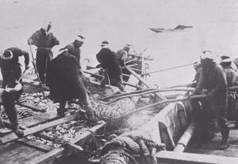 Herring fishing off the coast of Furubira in the Meiji era