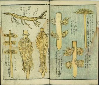 Various sacred shaved sticks